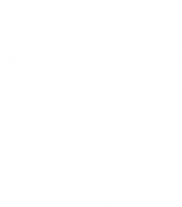 Verdun Dragon Boat Club icon